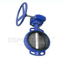 Gear Box Operetaed Butterfly valves